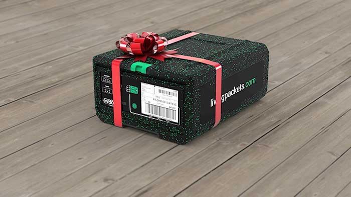 Photo of Et si vous offriez un cadeau original et durable pour Noël cette année ?