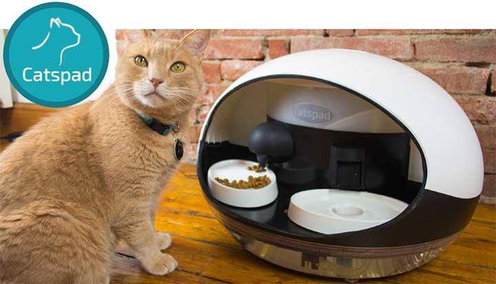 Photo of Distributeur connecté de croquettes et d'eau pour chat