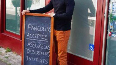 Photo de Pangolins acceptés, assureurs-déserteurs interdits