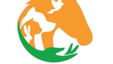 Photo de 20 millions d'euros pour les refuges et associations de protection animale !